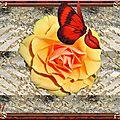 Przez skrzydła motyla