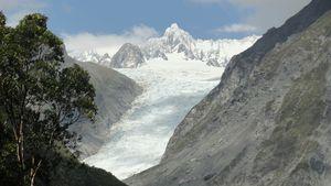 fox glacier 4