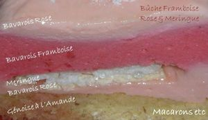 Bûche framboise rose 2