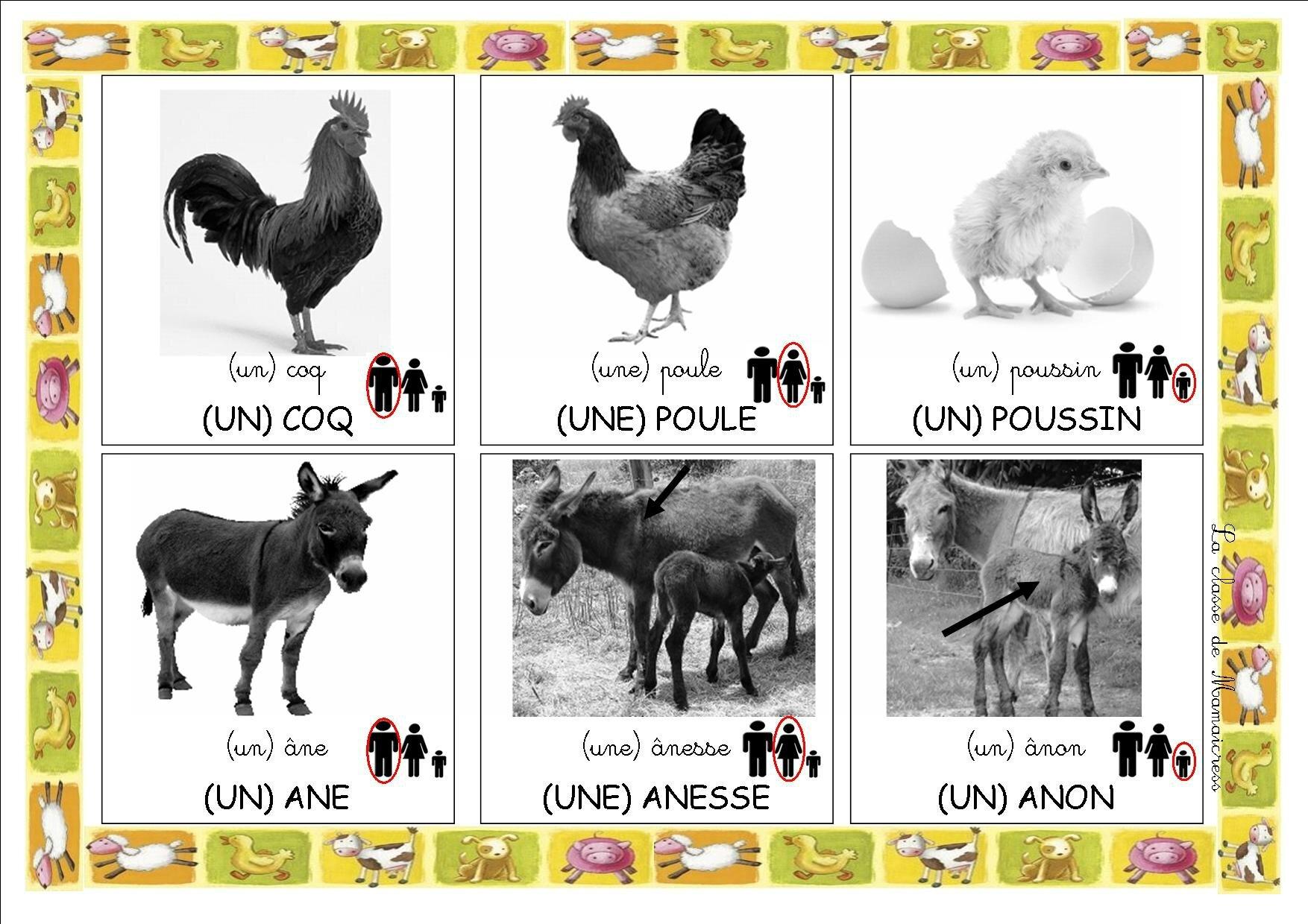 Bien connu Loto des animaux de la ferme - La classe de Mamaicress YN46
