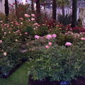 Floralies 110
