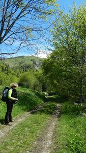 1346- Col La Croix - Sommet Feuillette - Vercors Jarjatte - 27052013 (8)