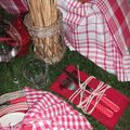 table picnic 061