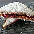 Peanut butter and jelly sandwich (sandwich au beurre de cacahuète et à la confiture)