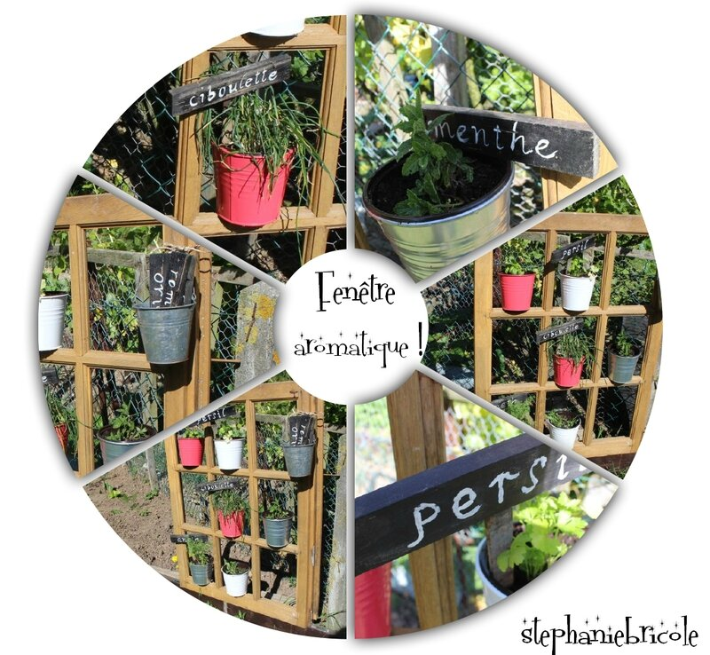 diy jardin aromatique original