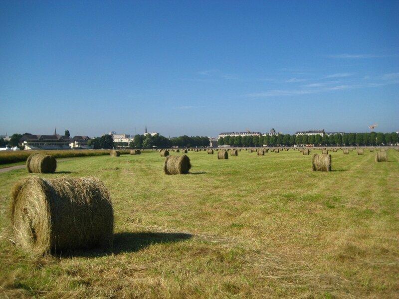Caen_prairie_fenaison