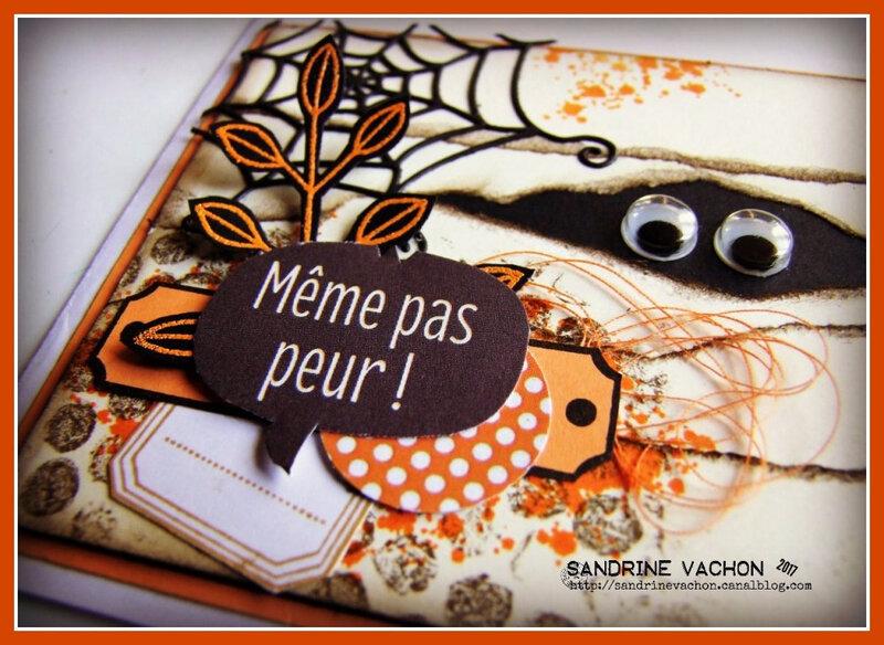 Sandrine VACHON défi 506 DT BLOG PCC (5)