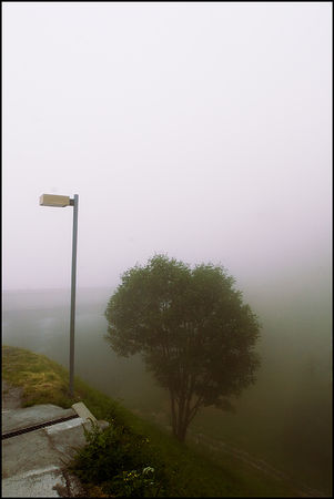 71_Brouillard