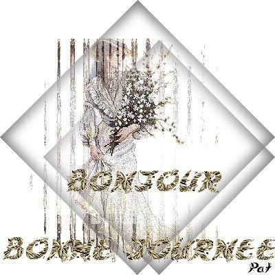 bonj_BJ_8_0