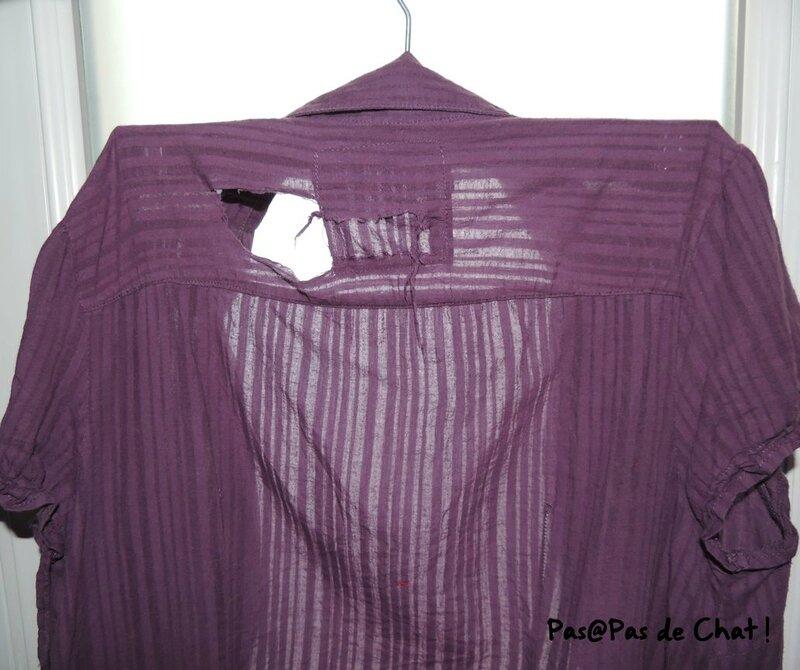 chemise-1-pasapasdechat