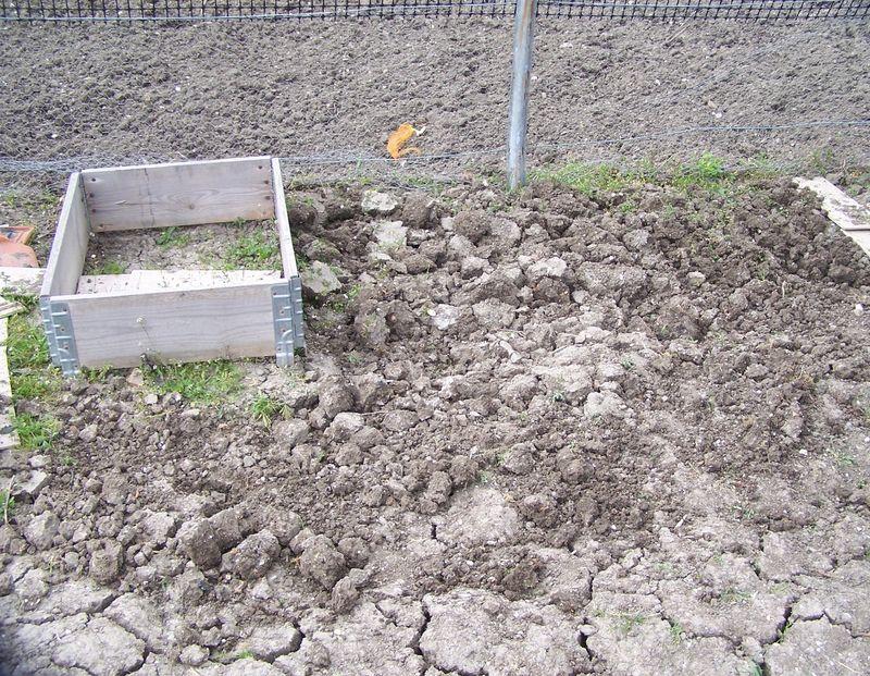 Au jardin de l 39 cole lamartine une cole qui vit et qui for Jardin lamartine
