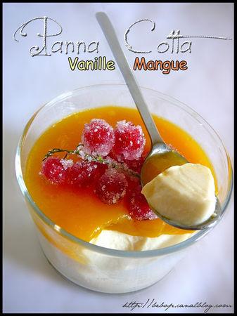 Panna_cotta_vanille__coulis_de_mangue_et_groseilles_givr_es