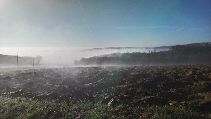 brume moulin
