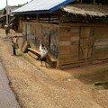 Laos, Luang Prabang à Vengviang 101