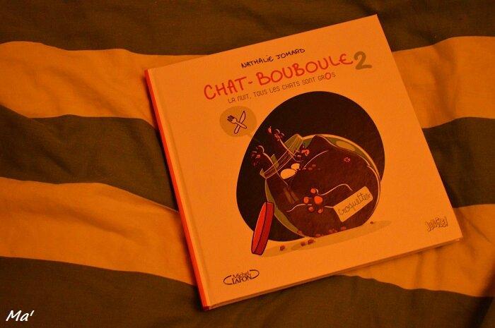 160608_chat_bouboule