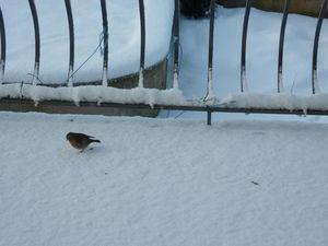neige_05