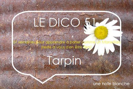 le_dico_51_tarpin