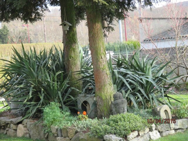 jardin 021