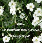 Pouvoir des fleurs Bétyle