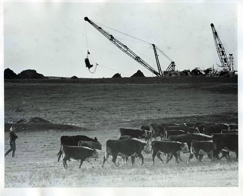 6-21081-03-Pearl-wall-trying-to-herd-cattle-amid-construction-of-McClusky-Cana-on-her-farm-early-1970s-optimized
