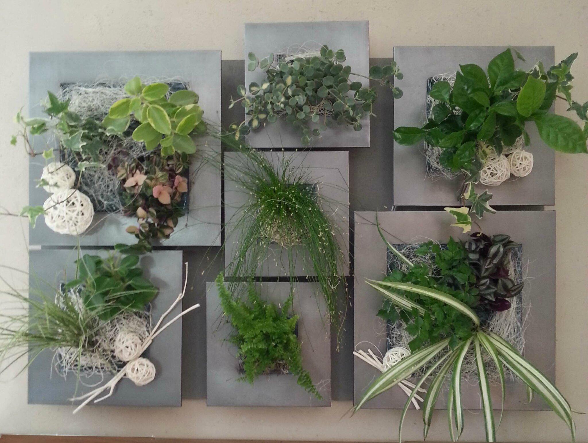 Tableaux végétaux muraux - Photo de * Les Bougeoirs et Soliflores et ...