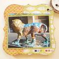 Mini 60 Lions (21)