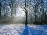 winter-wallpaper-scene-1600x1200-0066