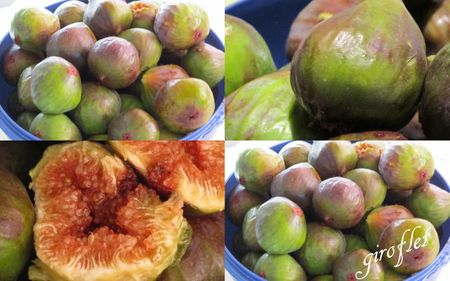montage figues