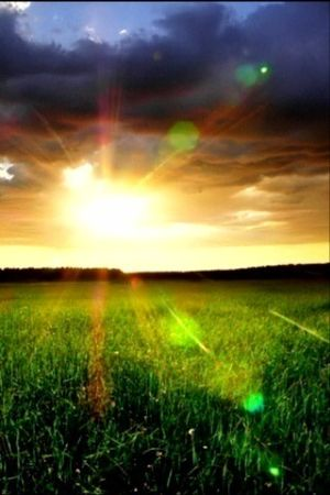 sunrise_in_the_country