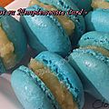 Macarons au Pamplemousse curd