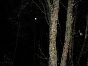 nocturne_3_mars_011