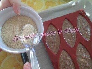 Petits gâteaux aux madeleines20