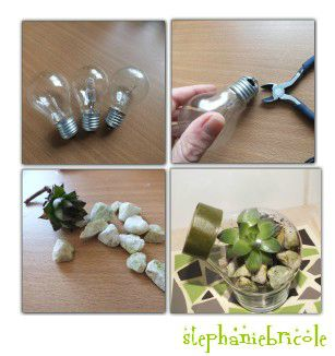 diy recycler les ampoules en terrarium st phanie bricole. Black Bedroom Furniture Sets. Home Design Ideas