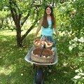 Le jus de pommes maison