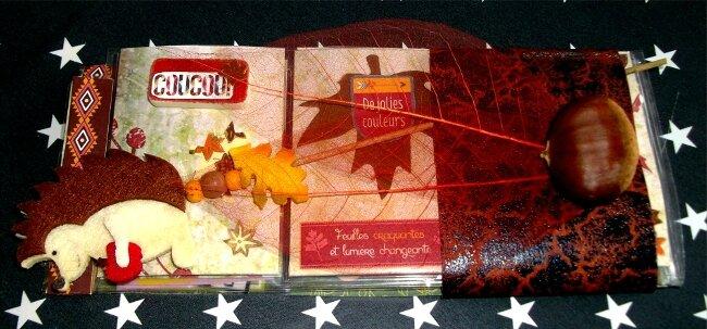 PL_14_feuilles d'automne_1