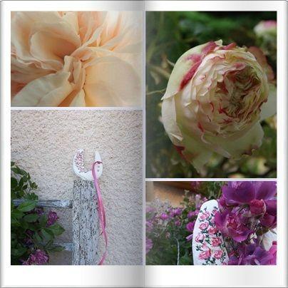 Fer & roses (14)