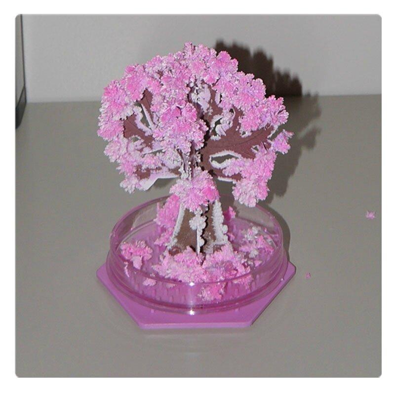 arbre magique 6