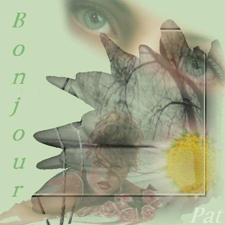 bonjour_2222
