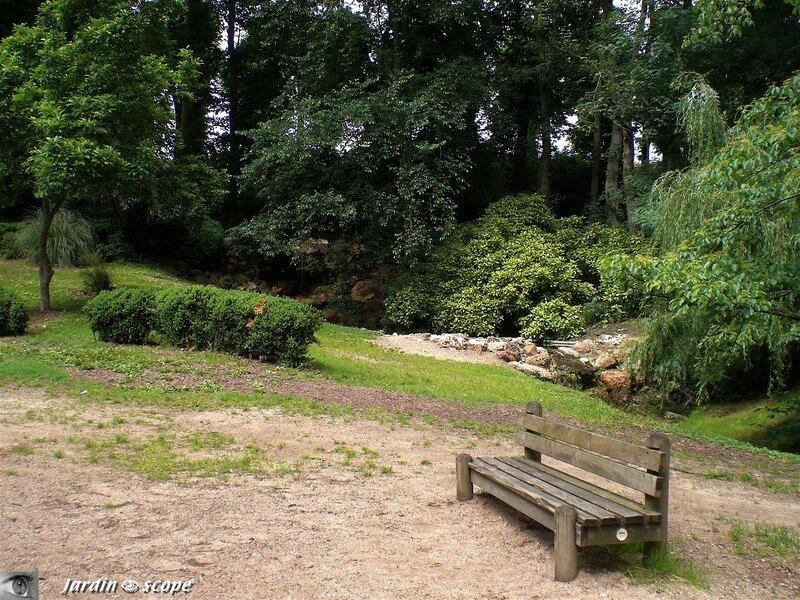 A l'arboretum de Chateauneuf-sur-Loire