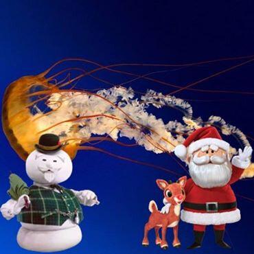 Ïmage Noël 1