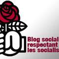 Congrès du parti socialiste - duel aubry - royal, le résultat du haut-rhin & de mulhouse