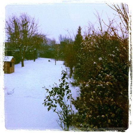 neige134