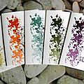 Ensemble de cartes in color assorties