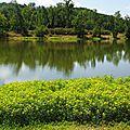 Lac et Eglise NERBIS 100816