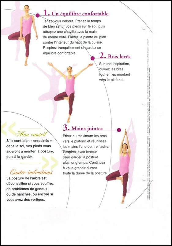 YOGA L'ARBRE P2all