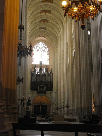 la Cathédrale Saint-Pierre et Saint-Paul b(2)