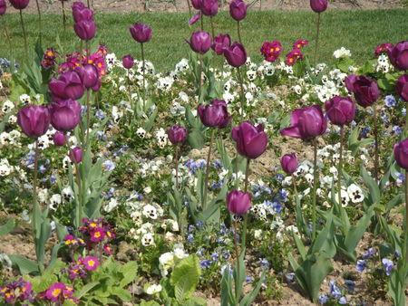 jardins_suspendus_040