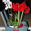 Les fleurs de la maison