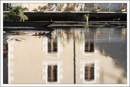 moulin_canards_Roussille_060710