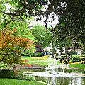A nouveau quelques cliches du jardin de ville...